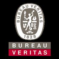 bureauveritas.it favicon
